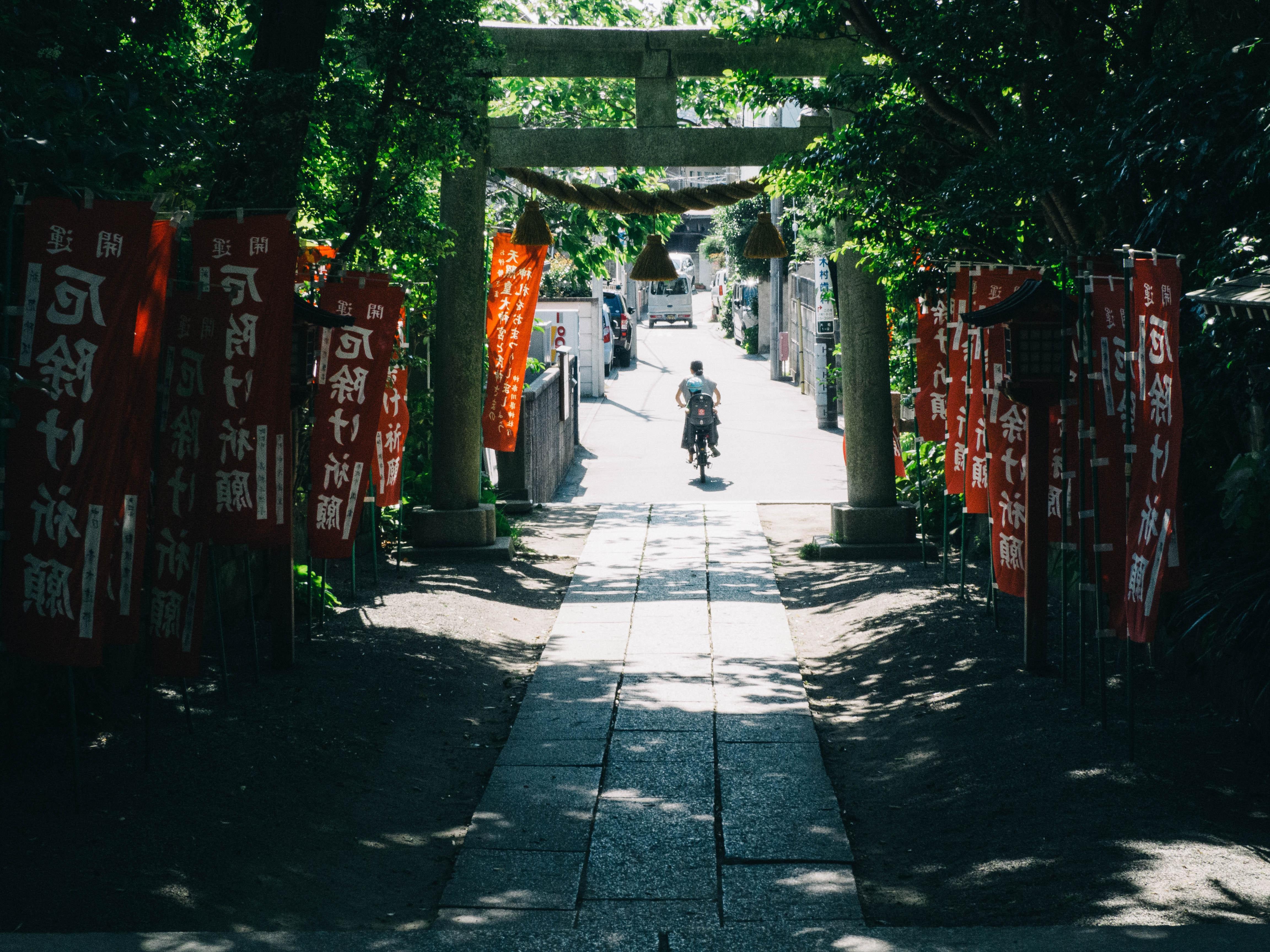 とある神社の参道を走り抜ける1台の自転車